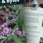 Photo collage of the spring 2021 newsletter featuring a butterfly and a page with upcoming events